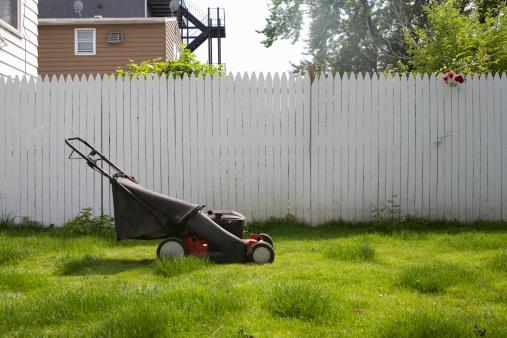 Lawn Mower「Lawnmower on lawn.」:スマホ壁紙(6)