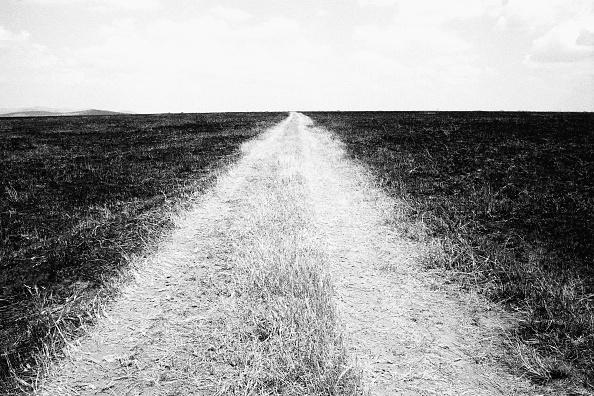 No People「Dirt Track」:写真・画像(2)[壁紙.com]