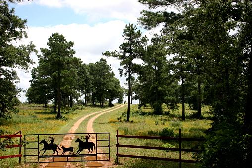 Horse「Dirt road to ranch near Austin, Texas. Fence, gate.」:スマホ壁紙(7)
