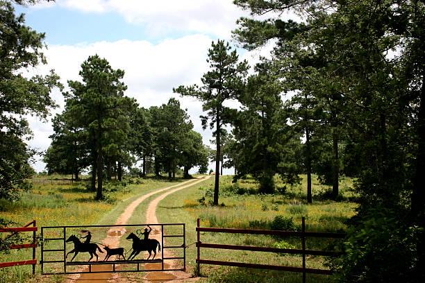 Dirt road to ranch near Austin, Texas. Fence, gate.:スマホ壁紙(壁紙.com)