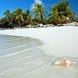 Windward Islands - Caribbean壁紙の画像(壁紙.com)