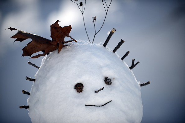 雪だるま「Huge Snow Storm Slams Into Mid Atlantic States」:写真・画像(14)[壁紙.com]