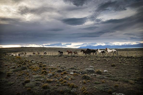 Environmental Damage「Global Warming Impacts Patagonia's Massive Glaciers」:写真・画像(11)[壁紙.com]