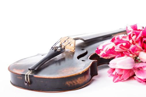 Violin「Black old violin」:スマホ壁紙(1)