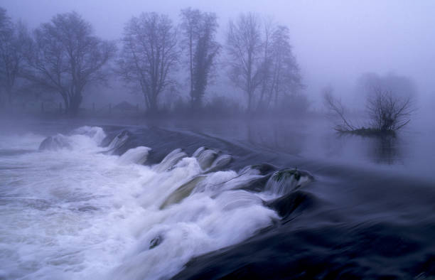 Tambre river in winter a foggy day Galicia Spain:スマホ壁紙(壁紙.com)
