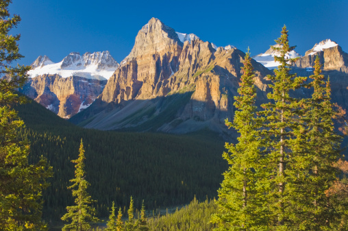 World Heritage「view of glacial mountains and trees in banff national park」:スマホ壁紙(11)