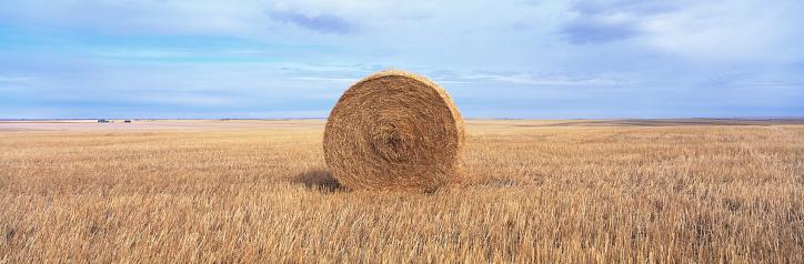 1990-1999「Hay Bale in a Wheat Field」:スマホ壁紙(19)