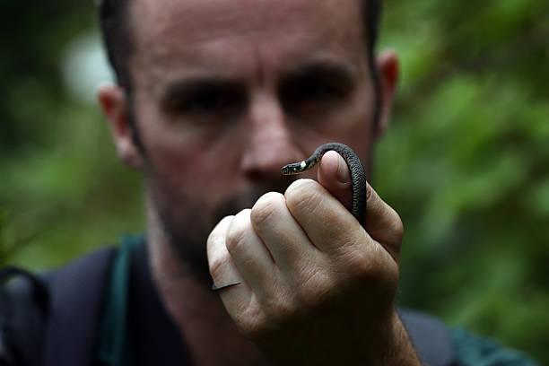 Wildlife At The Hampstead Heath Birding Pond:ニュース(壁紙.com)