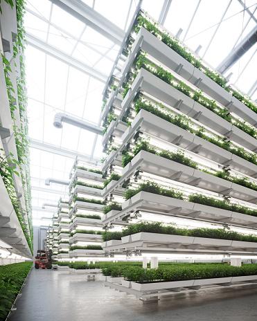 Gardening「Large vertical farm inside a greenhouse image generated digitally」:スマホ壁紙(7)