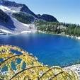 Okanogan National Forest壁紙の画像(壁紙.com)