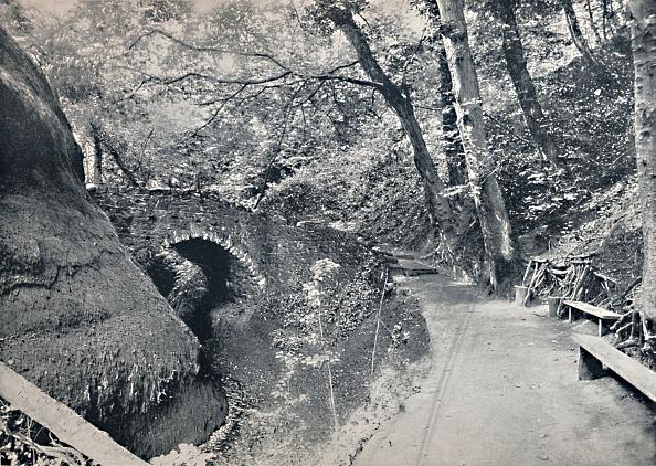 Footpath「Shanklin - The Chine」:写真・画像(16)[壁紙.com]