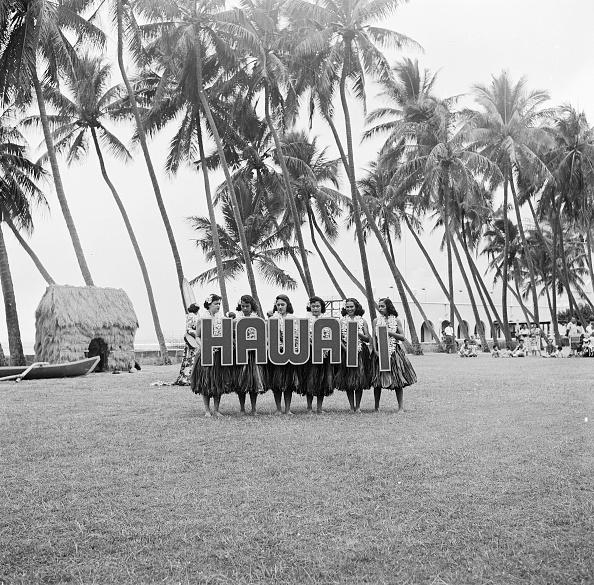 Hawaii Islands「Hawaii Hula」:写真・画像(17)[壁紙.com]
