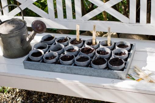 Bench「Seed pots」:スマホ壁紙(18)