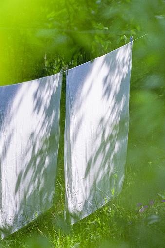 Laundry「White laundry on clothesline」:スマホ壁紙(14)