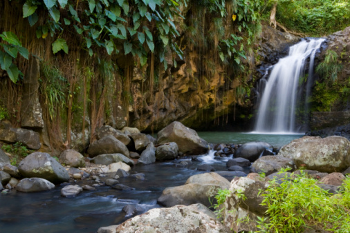 St「Annandale Falls, Constantine, St George, Grenada, Central America & the Caribbean」:スマホ壁紙(15)