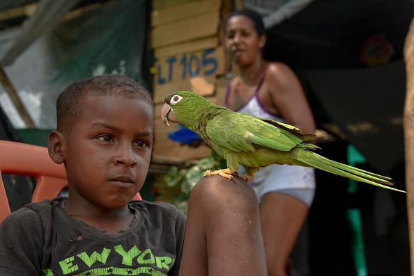 Bestof「Venezuelan Immigrants Living in Colombian Border Settlement」:写真・画像(16)[壁紙.com]