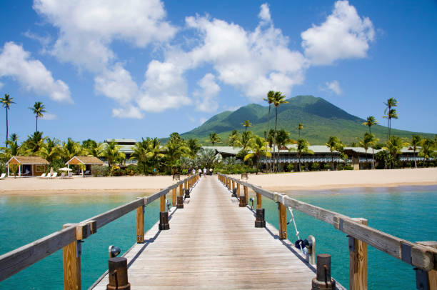 Pinneys Beach Nevis Caribbean:スマホ壁紙(壁紙.com)