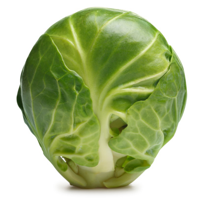 Cabbage Family「Brussels Sprout」:スマホ壁紙(14)