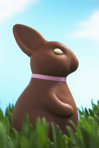 Easter Bunny「Chocolate Easter bunny facing in grass, side view, close-up」:スマホ壁紙(2)