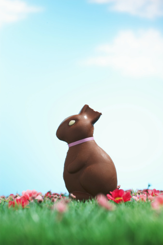 Easter Bunny「Chocolate Easter bunny with half of ear bitten off sitting on grass」:スマホ壁紙(6)