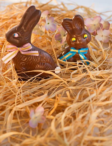 Chocolate Easter bunnies:スマホ壁紙(壁紙.com)