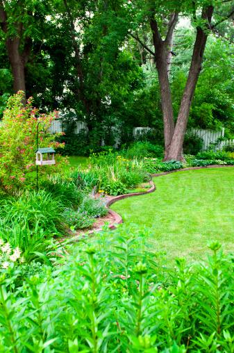 Ornamental Garden「Well maintained backyard garden」:スマホ壁紙(3)