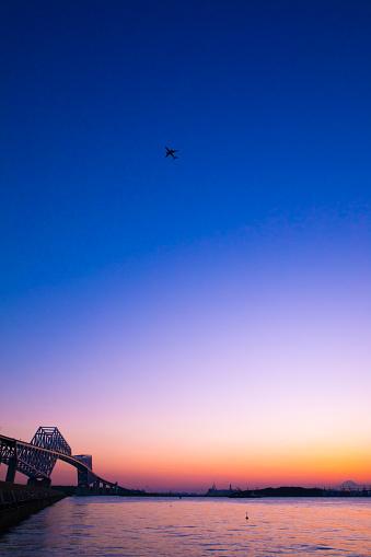 Airplane「Tokyo Gate Bridge, Mt. Fuji, Tokyo Bay, and airplane in sunset」:スマホ壁紙(8)