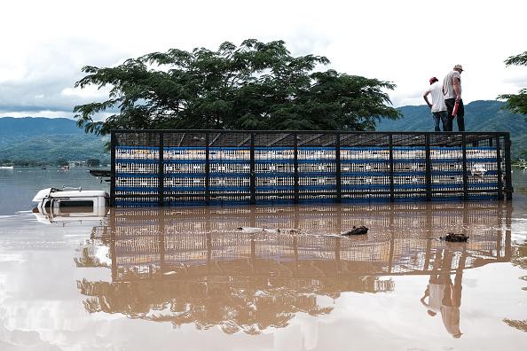 Central America「Aftermath of Tropical Storm Eta in Honduras」:写真・画像(19)[壁紙.com]
