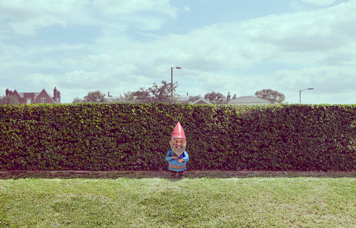 Statue「Garden gnome near hedge」:スマホ壁紙(4)