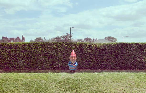 Garden gnome near hedge:スマホ壁紙(壁紙.com)