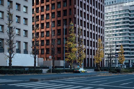 Marunouchi「Street of Marunouchi, Tokyo」:スマホ壁紙(10)