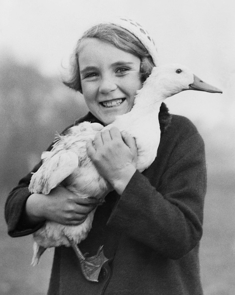 One Animal「Orphan Holding Duck」:写真・画像(0)[壁紙.com]