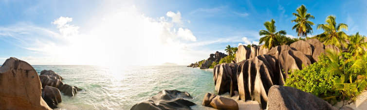 Desert Island「Tropical island beach sunburst palm panorama」:スマホ壁紙(19)