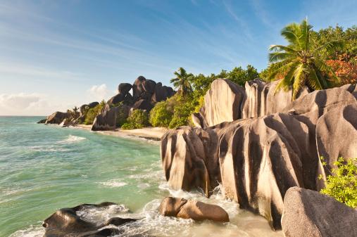 Frond「Tropical island beach idyllic palm tree ocean」:スマホ壁紙(3)
