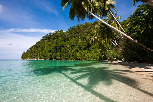 Arafura Sea「Tropical Island at Strait of Iris, Indonesia」:スマホ壁紙(2)