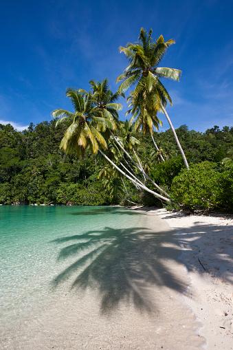 Arafura Sea「Tropical Island at Strait of Iris, Indonesia」:スマホ壁紙(18)