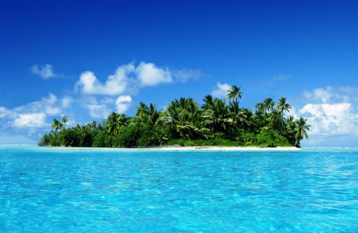 Frond「Tropical island」:スマホ壁紙(9)