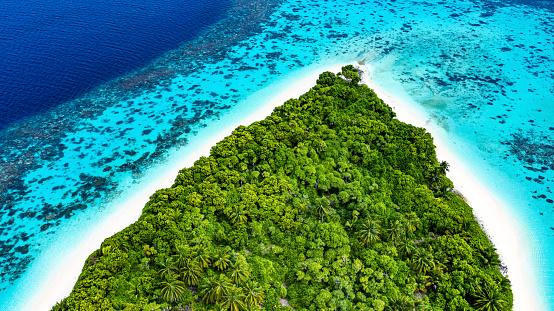 Island「Tropical Island in the Ocean」:スマホ壁紙(8)