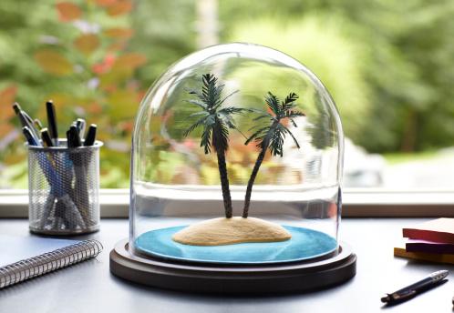 Island「Tropical Island Under Glass Dome」:スマホ壁紙(5)