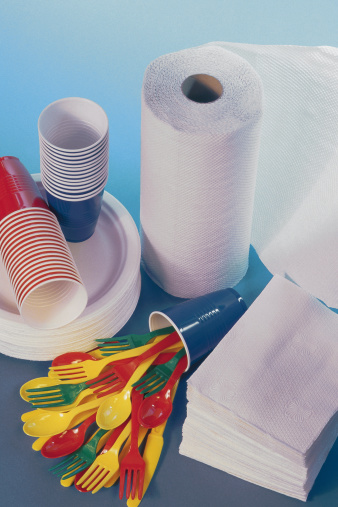 Picnic「Paper plates and other picnic supplies」:スマホ壁紙(4)