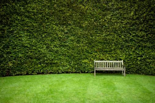 Formal Garden「Bench in garden」:スマホ壁紙(8)