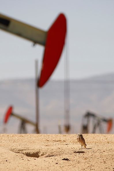 Shale「Fracking In California Under Spotlight As Some Local Municipalities Issue Bans」:写真・画像(19)[壁紙.com]