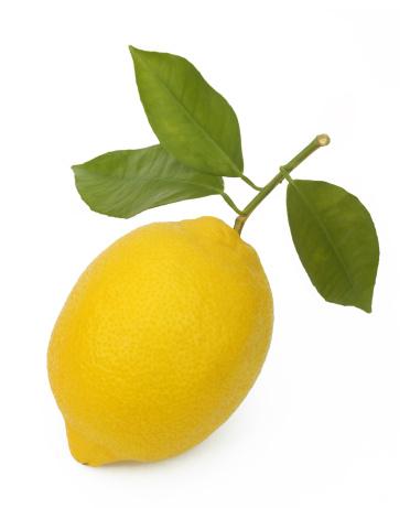 Vertical「Three leaves still attached to ripe lemon.」:スマホ壁紙(5)
