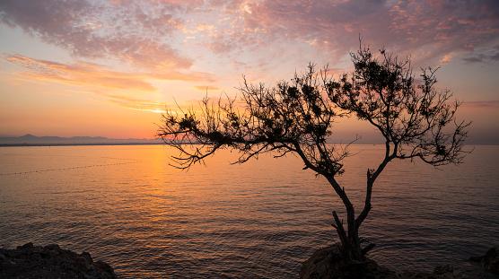 ピンク色「Sunrise Over Mediterranean Sea, Antalya」:スマホ壁紙(3)