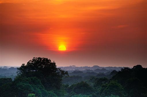 Amazon Rainforest「Sunrise over the Amazon River Basin」:スマホ壁紙(7)