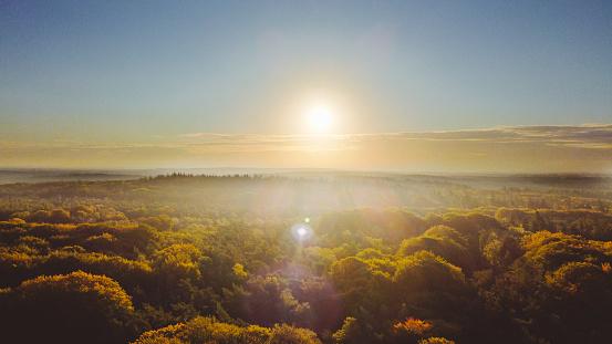 Utrecht「Sunrise over a forest in autumn colours. Netherlands, Utrechtste heuvelrug. Drone shot.」:スマホ壁紙(11)