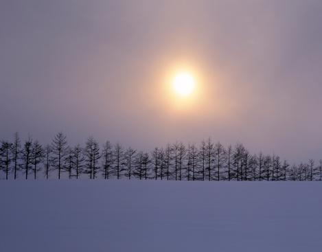 Copse「Sunrise over snowy field, Ozora-cho, Hokkaido, Japan」:スマホ壁紙(11)