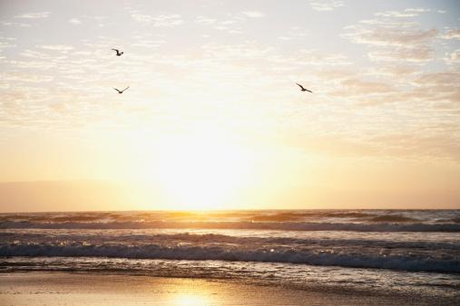 美しさ「日の出の海」:スマホ壁紙(6)