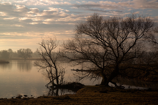 North Brabant「Sunrise over Biesbosch National Park, Netherlands」:スマホ壁紙(11)