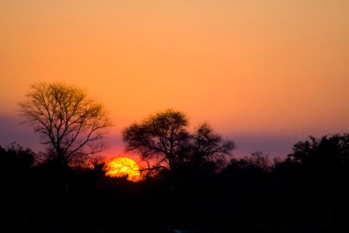 Caprivi Strip「Sunrise over Okavango River, Caprivi Strip, Namibia」:スマホ壁紙(8)